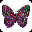 Candleware-CDB303-Purple/Green Butterfly - Purple/Green Butterfly