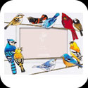 Photo Frame-PFR4687Birds on a Wire - Birds on a Wire